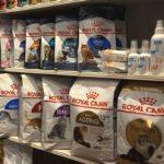 Alimentation pour chat - Croquettes Royal canin