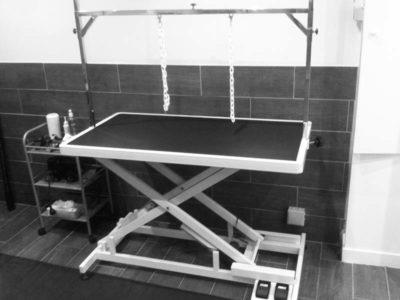 Salle toilettage table